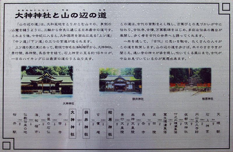 DSC07543.jpg