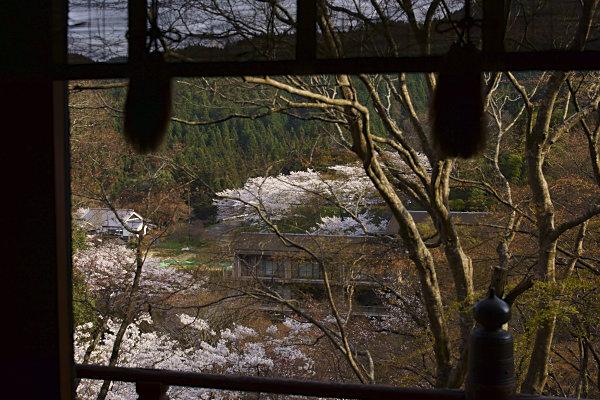 談山神社 (17).jpg