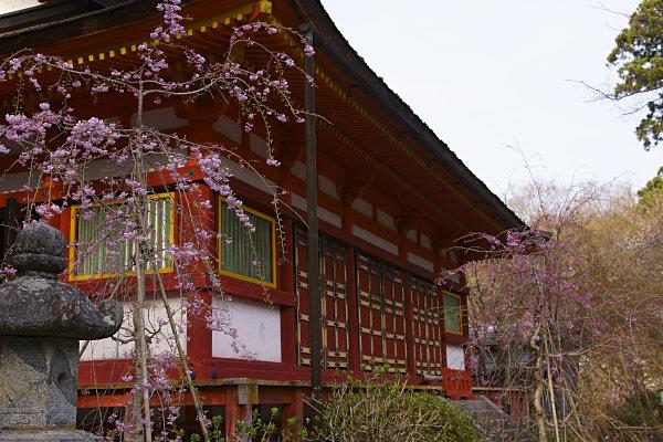談山神社 (42).jpg