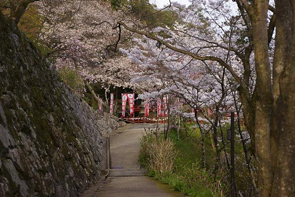 談山神社 (49).jpg