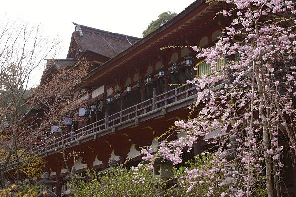 談山神社 (58).jpg