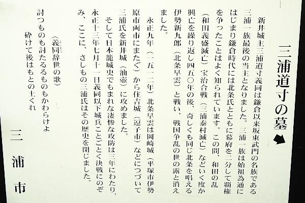 _DSC9463.jpg